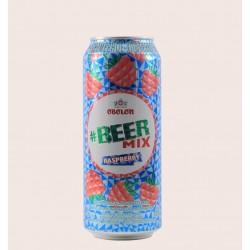 BeerMix Raspberry